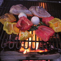 Arrange the food ove flame or coals.
